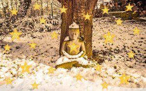 Advents-Impuls-Kalender von Inmeditas für Frieden in dir und in der Welt
